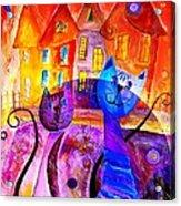 Cats 0366 Marucii Acrylic Print