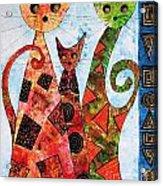 Cats 737 - Marucii Acrylic Print