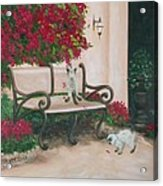 Cat Art Print On Canvas Oil Painting Hire Commission Pet Portrait Artist Acrylic Print