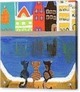 Cats Enjoying The View Acrylic Print