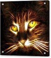 Cat's Eyes - Fractal Acrylic Print