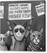 Cats On Strike Edit 4 Acrylic Print