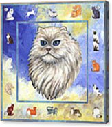 Cats Purrfection Four - Persian Acrylic Print