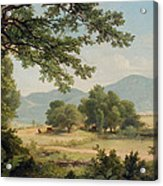 Catskill Meadows In Summer Acrylic Print by Asher Brown Durand