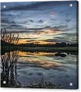 Cattails And Sunset Acrylic Print