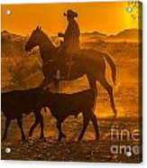 Cattle Drive 13 Acrylic Print
