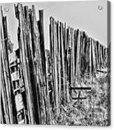 Cattle Fence By Diana Sainz Acrylic Print