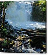 Cattyman Falls 2 Acrylic Print