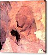 Cave Bear Acrylic Print