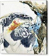 Cave Dragon Acrylic Print