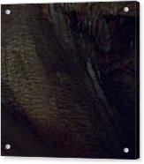 Cavern Darkness Acrylic Print