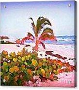 Cayman Island Secret Acrylic Print