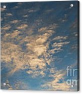 CC4 Acrylic Print