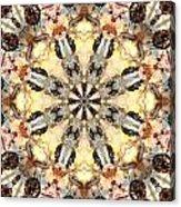 Cecropia Sun 5 Acrylic Print