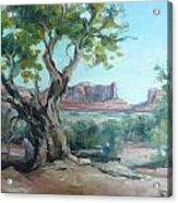 Cedar At Monument Valley Acrylic Print