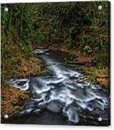 Cedar Creek Horiz. Acrylic Print