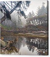 Cedar Creek Lagoon Acrylic Print