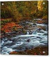 Cedar Creek Morning Acrylic Print