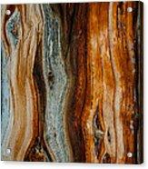 Cedar Texture Acrylic Print