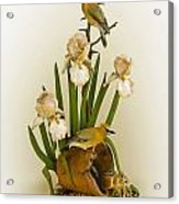 Cedar Waxwings And Iris Acrylic Print