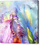 Celestial Goddesses Acrylic Print