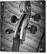 Cello Classic Art Acrylic Print