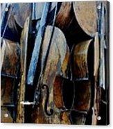 Cellos 6 Acrylic Print