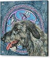 Celtic Hound Acrylic Print