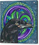 Celtic Raven Acrylic Print