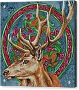 Celtic Stag Acrylic Print