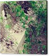 Cemetery Bench II Acrylic Print