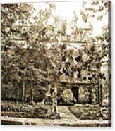 Cemetery Sunflares Acrylic Print