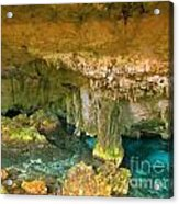 Cenote Two Acrylic Print