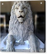 Center Street Lion Acrylic Print