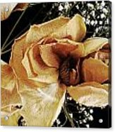 Centerpiece Acrylic Print by Tanya Jacobson-Smith