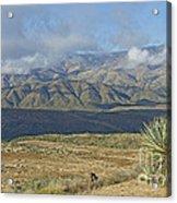 Central Arizona Landscape Acrylic Print