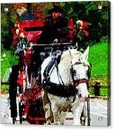Central Park Carriage Acrylic Print