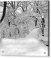 Central Park Dressed Up In White Acrylic Print