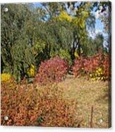Central Park In Autumn 10 Acrylic Print