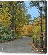 Central Park In Autumn 7 Acrylic Print