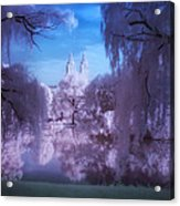 Central Park Lake Willows Color Acrylic Print