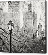 Central Park Lamppost In New York City Acrylic Print