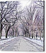 Central Park Mall In Winter Acrylic Print