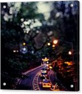 Central Park Nights Acrylic Print