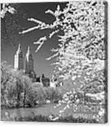 Central Park - Nyc Acrylic Print