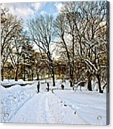Central Park Snow Storm One Day Later2 Acrylic Print