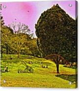 Central Park Sunday Acrylic Print