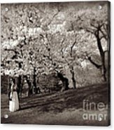 Central Park Wedding - Antique Appeal Acrylic Print