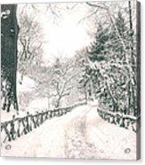 Central Park Winter Landscape Acrylic Print