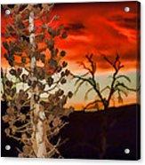 Century Soldier Sunset Acrylic Print